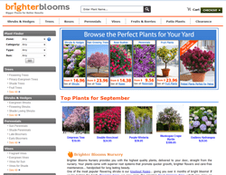 Brighter Blooms Coupons