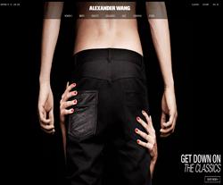 Alexander Wang Promo Codes