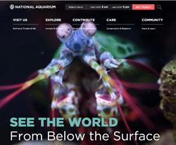 5 Off National Aquarium Baltimore Coupons Amp Promo Codes