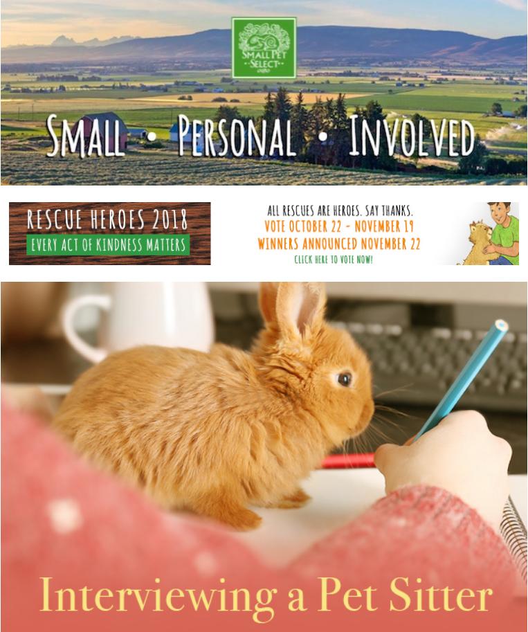 Pet Supermarket Discount Code >> Pet Supplies Promo Codes & Vouchers July 2019